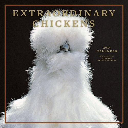 Extraordinary Chickens 2014 Wall Calendar