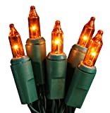 Set of 20 Battery Operated Orange Mini Christmas Lights - Green Wire