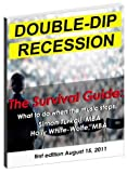 img - for Double-Dip Recession: The Survival Guide book / textbook / text book