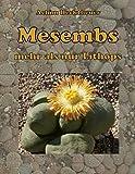 Image de Mesembs - mehr als nur Lithops