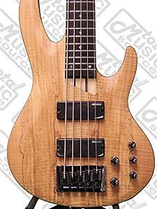 ESP LTD B Series B-205 5-String Bass Guitar, Natural Satin from ESP