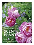 img - for Royal Horticultural Society Companion to Scented Plants book / textbook / text book