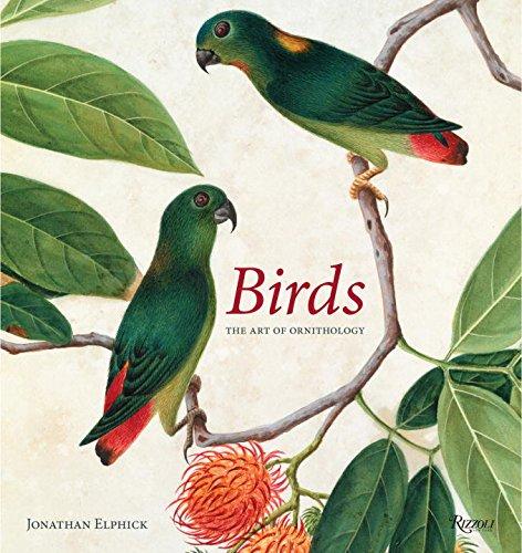 birds-the-art-of-ornithology-rizzoli-classics