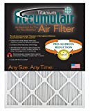 Accumulair Titanium 25x32x1 (24.5x31.5) High Efficiency Allergen Reduction Air Filter/Furnace Filters (2 pack)