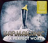 In A Perfect World By Karmakanic (2011-07-25)