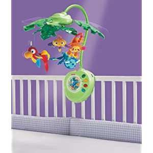 Fisher-Price Rainforest Peek-A-Boo Leaves Musical Mobile
