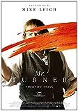 Mr. Turner [DVD]