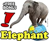 Learn to Read - Elephants: Kids Learn about Elephants with Large, Beautiful Photos and Fun Facts (Free Bonus: 30+ Free Online Kids Jigsaw Puzzle Games!)