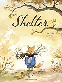 Book Cover: Shelter