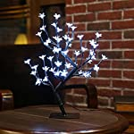 Zanflare 0.45M/17.72Inch 48LEDs Cherry Blossom 