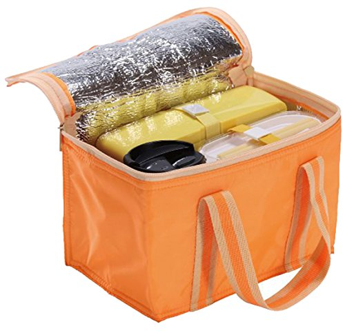 soloa 保温 保冷 バッグ オレンジ (350ml缶×6本入る)
