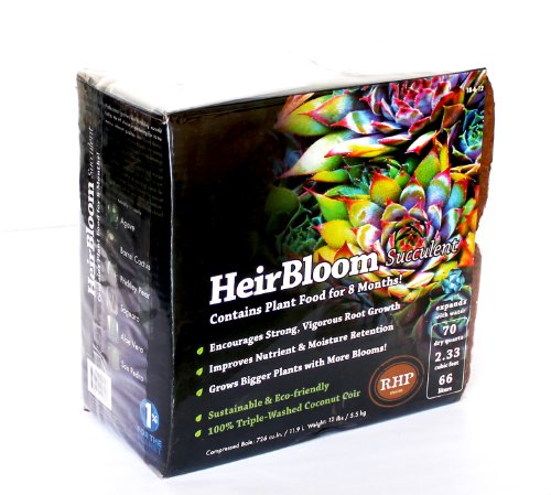 SuperMoss HeirBloom Succulent Soil with Fertilizer