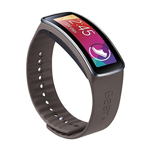 Samsung Galaxy Gear Fit Replacement Plastic Band - Retail Packaging - Gray by Samsung [並行輸入品]