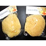 """2 pack of 6""""-7"""" Natural Ocean Real Sea Sponge By The Sponge Company Set of 2"""