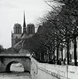 Cathedral near a river, Notre Dame, Paris, France Poster Print (18 x 24)