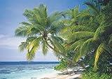 Ravensburger-Maldives-Puzzle-1500pc