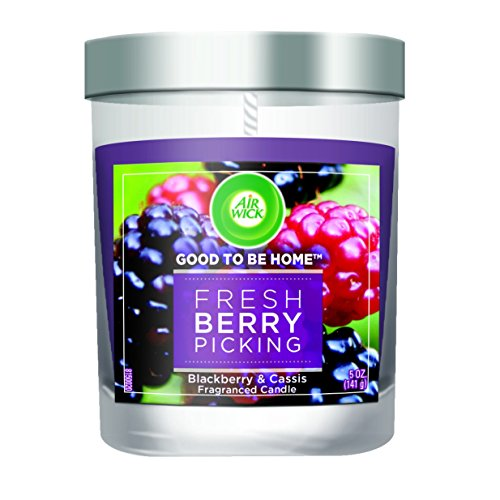 Air Wick Good To Be Home Premium Scented Candle Collection, Fresh Blackberries and Cassis, 5 Ounce (Good To Be Home compare prices)
