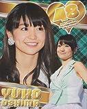 AKB48 【大島優子】 2013年度版A3カレンダー