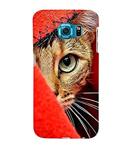 Cat with big eyes 3D Hard Polycarbonate Designer Back Case Cover for Samsung Galaxy S6 Edge :: Samsung Galaxy Edge G925
