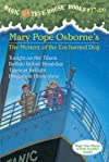 Magic Tree House, Books 17-20