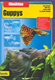 img - for MiniAtlas Guppys book / textbook / text book