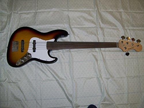 5 String Fretless Bass Guitar, Unique