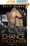 Chance Encounter (Chance Encounter Se...