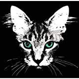 Artzloom Head Of A Cat With Green Eyes Vector Canvas Art Print With Frame - Size 31.6 Inch X 30.9 Inch