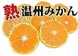 史上最安値への挑戦 ご自宅用に 熊本県産 熟 温州みかん10kg(M-3L)