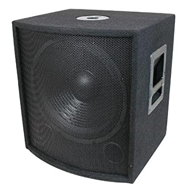 15'' PA/DJ Speaker Subwoofer 700W by MCM Custom Audio