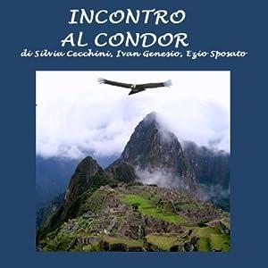 Incontro al condor [Meeting the Condor] | [Silvia Cecchini, Ivan Genesio, Ezio Sposato]