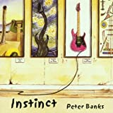 Instinct by Banks, Peter [Music CD]