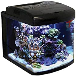 JBJ 28 Gallon NanoCube Advanced Aquarium with LED Lighting