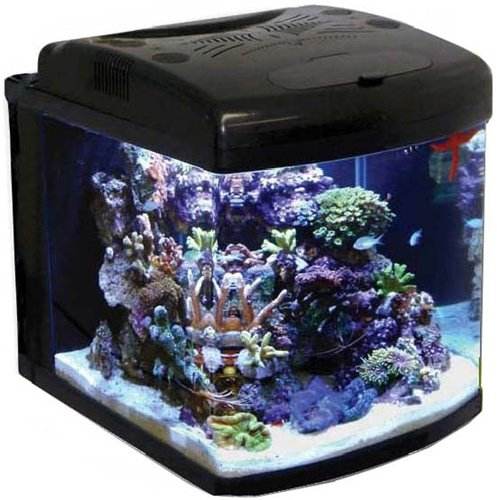 Jbj Mt-603-Led 28 Watt Nano Cube Led Intermediate Lighting, 28-Gallon