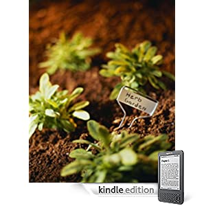 How to Start and Grow Your Own Herb Garden