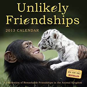 Unlikely Friendships 2013 Wall Calendar