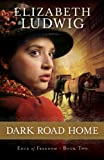 img - for Dark Road Home (Edge of Freedom Book #2): Volume 2 book / textbook / text book