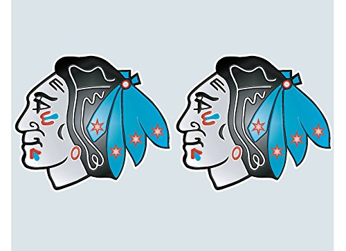 Blackhawks with Chicago Flag Vinyl Sticker 5