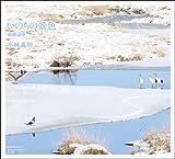 いのちの景色 釧路湿原(写真集)