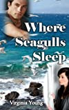 img - for Where Seagulls Sleep book / textbook / text book