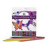 SET di 48 MATITE COLORATE PROFESSIONALI - Astuccio di 48 Pastelli Acquarellabili a Colori per Adulti e Bambini, Ideali per Disegno Artistico, Libri da Colorare, Scuola, Matita in Legno Naturale di Alta Qualità