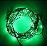 Asunflower® 10M/33ft Copper Wire Flexible LED String Light with 100 Individually Mounted LED's Starry String Lights Fairy Lights For Christmas Wedding Party Birthday Holiday Bedroom Decoration with 12V 2A US Standard Power Adapter AC 100V-240V to DC 12V 2.0A Converter, Waterproof LEDs (Green, 10M/33ft)