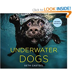 amazoncom underwater dogs 9780316227704 seth casteel books dogs pictures 300x300