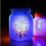 Solar Lights, Solar Lantern powered by Solar! Two different color LED light inside. Great gift for children, friends or famlily! Made of glass, with a handy metal hook!!! Sun light