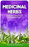 Medicinal Herbs: Grow Your Own Drugs From Home Now!