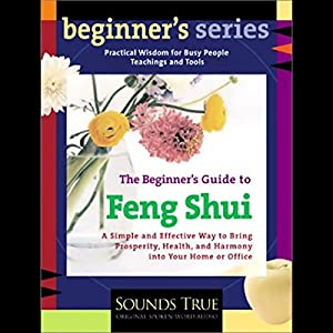 The Beginner's Guide to Feng Shui Speech