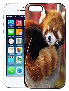 FCS Printed 2D Designer Hard Back Case For Apple IPhone 5,Apple IPhone 5S Design-10254