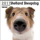 THE DOG シェットランド・シープドッグ  2011年カレンダー