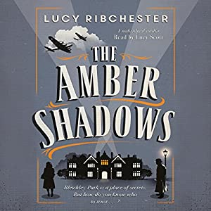 The Amber Shadows Audiobook