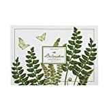 Two's Company 48-Piece Ferns Placemat Book